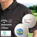 名入れ速乾性スポーツポロシャツ&名入れゴルフボールギフトセット [ 誕生日プレゼント 男性 イラスト お名前印刷 プレゼント お名前入りゴルフ 父の日 ]10P03Dec16
