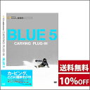 「BLUE 5 - carving plug-in」 アルペン 新作スノーボード DVD 2016