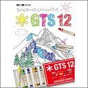 カービングムービーGTSシリーズ最新作 「GTS12」 新作スノーボード DVD 2017