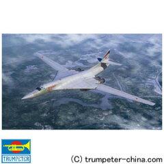 Tu 160 (航空機)の画像 p1_3