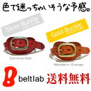 [free shipping] basic real leather belt MEN'S Belt LADY'S Belt where watch 細, and denim becomes slightly fun in men's Lady's every day where store specializing in belts ♪ 800 kinds [50%OFF 1,995 yen real leather belt] of feelings ten colors available and a buckle available are fun