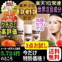 【82%OFF】老け肌に攻める3点お試しセット1本3役洗顔/業界注目EGF・フラーレン配合美容液/肌