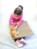 【3周年送料無料セール】●安心の日本製●猫(ネコ)の爪とぎ【ガリット ワイドタイプ-箱付き-】 つめとぎ 丈夫で長持ち 【RCP】