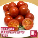 紅光の完熟フルティカトマト 小箱(1kg) トマト ミニトマト フルーツトマト