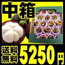 果実の女王と呼ばれるおいしい果実、完熟マンゴスチンをフレッシュ(新鮮)でお届け♪甘い、おいしい、高品質【予約・2011年4月下旬発送予定】【送料無料】タイ産 フレッシュマンゴスチン中箱 (約14〜20個入り)一番品質が良い農園のものにこだわって航空便(エアー)で輸入しました。【smtb-T】