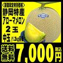 静岡産 アローマメロン 中玉(1.2キロ前後)2玉 箱入り「...
