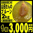 プルーン 生プルーン北海道仁木町山田さんの完熟生プルーン4パック入り(約2キロ)(4パックで約60〜80個前後)