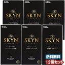 SKYNオリジナル アイアール 10コ入×12個セット 送料無料
