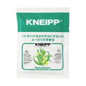 クナイプ バスソルト ユーカリの香り 40g【医薬部外品】