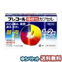 【第(2)類医薬品】 プレコール持続性カプセル 12カプセル...
