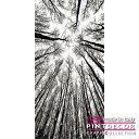 デコレーションパネル PINTDECOR グラフィコレクション IN CIMA G4118 ピントデコール イタリア アートパネル ウォールデコ ペインテ..