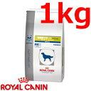ロイヤルカナン犬用満腹感サポートスペシャルドライ 1kg×1 (動物用療法食)【ROYALCANIN】