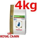 [あす楽対応]ロイヤルカナン猫用pHコントロールオルファクトリードライ 4kg×1(動物用療法食)【ROYALCANIN】