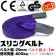 スリングベルト 幅25mm 1m 使用荷重800kg 高品質よろこび価格 ナイロンスリング ベルトスリング 繊維ベルト