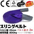 スリングベルト 幅25mm 2m 使用荷重800kg 高品質よろこび価格 ナイロンスリング ベルトスリング 繊維ベルト