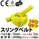 スリングベルト 幅75mm 1m 使用荷重2400kg 高品質よろこび価格 ナイロンスリング ベルトスリング 繊維ベルト