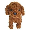 トイプードルのぬいぐるみ レッド 茶 【プレミアムパピー】 ( ベストエバー かわいい犬のぬいぐるみ 誕生日 プレゼント ギフト Premium Puppy )