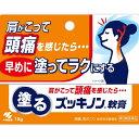 【第3類医薬品】塗るズッキノン 15g(4987072083239)