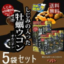 井藤漢方製薬 しじみの入った牡蠣ウコン+オルニチン 徳用 264粒(66日分)×5袋セット