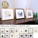 アートフレーム(Art Frame)Organic Series(オーガニックシリーズ)JIG(ジェイアイジー) 全15タイプ