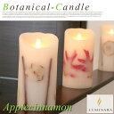 LEDキャンドル ボタニカルキャンドル(botanical candle) アップルシナモン(applecinnamon)LM202-AP LUMINARA(ル...