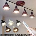 ハーモニーグランデリモートシーリングランプ(HARMONY GRANDE-remoto ceiling lamp) アートワークスタジオ(ART WORK ST...