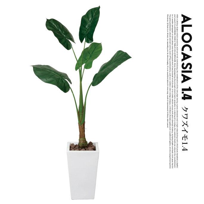 くわず芋1.4(alocasia odora) 光触媒 イミテーショングリーン 送料無料 おしゃれなフェイクグリーン,カフェスタイル観葉植物,西海岸デザイン,レトロビンテージ,人気のインテリア雑貨,光触媒加工