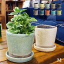 RoomClip商品情報 - Color glazed pot (カラーグレーズドポット) Mサイズ 植木鉢 DULTON(ダルトン) 全10色
