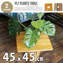 PLT Plants Table(プランツテーブル) スクエ