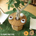 プランターテーブル サイドテーブル PLT Plants Table プランツテーブル サークルΦ60cm カラー(チーク・マンゴー) 天然木 観葉植物テーブル 西海岸