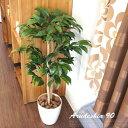 生い茂るリーフにいやされる! アルデシア90 光触媒 イミテーショングリーン 日本製