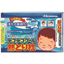 久光製薬 Hisamitsu デコデコクール 熱とり枕