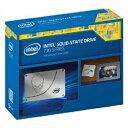 【あす楽対象】【送料無料】 インテル 2.5インチSATA接続SSD SSD 730 SERIES 480GB RESELLER BOX SSDSC2BP480G4R5(480GB)