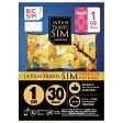IIJ Regular SIM 「BIC SIM JAPAN TRAVEL SIM/1GB」 Prepaid・Data only・SMS unavailable IMB088201611P