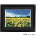 ナカバヤシ Nakabayashi アルミ製軽量写真額 2L判 フSA220D