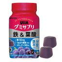 UHA味覚糖 グミサプリ 鉄&葉酸【wtcool】