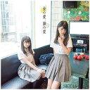 エイベックスエンタテインメント SKE48/金の愛、銀の愛 初回生産限定盤 Type-D 【CD】