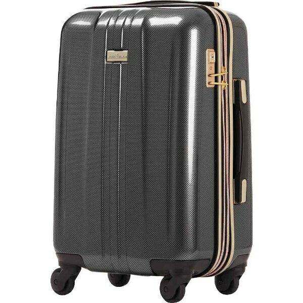 【送料無料】 ティーアンドエス TSAロック搭載スーツケース(32L) ANCHOR+ 6701 6701-48-CB カーボン 【メーカー直送・代金引換不可・時間指定・返品不可】