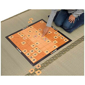 メガハウス カードではじめて将棋[人気ゲーム 1202]