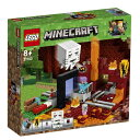 【送料無料】 レゴジャパン LEGO(レゴ) 21143 マインクラフト 闇のポータル