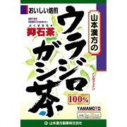 山本漢方 ウラジロガシ茶100%20H