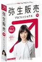 弥生 Yayoi 弥生販売19プロフェッショナル通常版<新元号 消費税法改正> Windows用 HRAM0001