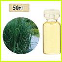 生活の木| エッセンシャルオイル レモングラス・西インド型 50ml精油 業務用 大容量 【HLS_DU】【RCP】【コンビニ受取対応商品】