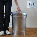 日本のトタンバケツ[42L]ふた付き ゴミ箱 ごみ箱 42リットル 大容量 大型 シルバー 国産・日本製【送料無料】【smtb-kb】