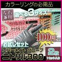 【あす楽対応】エバーメイト ニトリル グローブ 300 【サイズSML選べます】 2枚入1セット お試しセット カラーリンググローブ/ヘアダイグローブ【新生活】