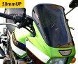 ZRX1200 DAEG(ダエグ)全年式 ネイキッド・スクリーン (ダーク・スモークカラー) Powerbronze(パワーブロンズ)