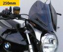 BMW R1200R(06年〜) ネイキッド・スクリーン (ダーク・スモークカラー) Powerbronze(パワーブロンズ)