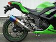 Ninja250 2013年〜 リヤエキゾーストマフラー(オーバル)ステンレス/チタンオーバル焼き色 JMCA WR'S(ダブルアールズ)