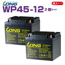 WP45-12  2個セット  12V45Ah  UPS・防災・防犯・シニアカー・セニアカー・システム等多目的バッテリー LONGバッテリー バイクパー..