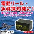 WP12-12 12V12Ah 90日保証付【厳選】魚影探知機・電動リール・船舶用補助電源 バッテリー 新品 Smart-UPS